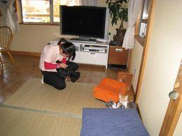 IMG_201002mezamasi1.jpg