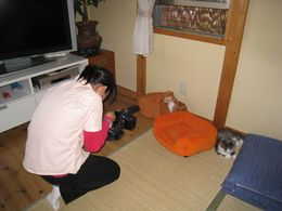 IMG_201002mezamasi2.jpg