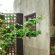 fence013.jpg